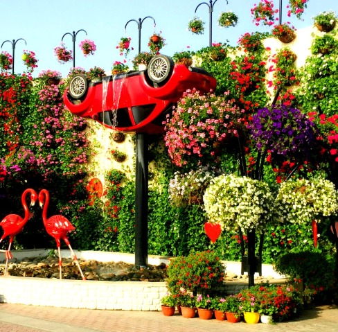 dubai-miracle-garden-upside-down-car-fountain